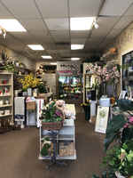 18+ Year Profitable Flower shop