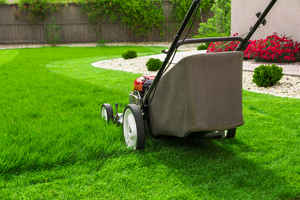 GREAT FINANCIALS on this 17yr old Lawn Business