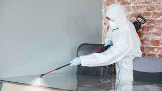 Health and Safety Cleaning Franchise for Sale