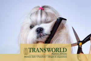 South Tampa Pet Grooming