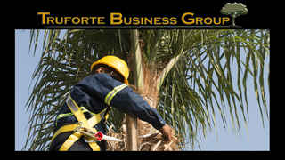 Tree Service Business for Sale In Saint Petersburg