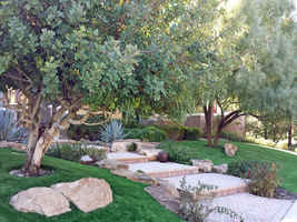 Commercial/Residential Landscaping Business - NAZ