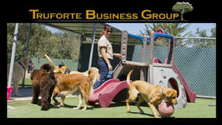 Dog Boarding and Grooming Business for Sale