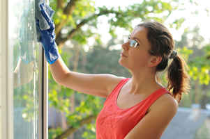Window Cleaner - Owner Works 1/4 Time Managing