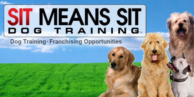 Premier Dog Training Md