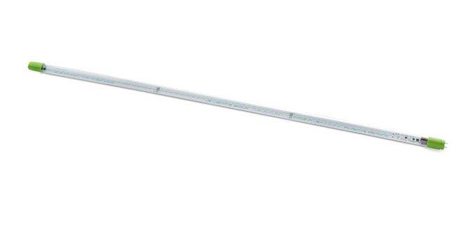 US Lighting Group Design