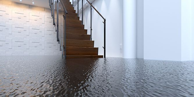 Restoration/Water Damage Franchise Experts