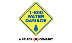 1-800 WATER DAMAGE Franchise Opportunity
