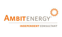 Ambit Independent Consultant