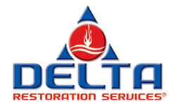 Delta Disaster Services