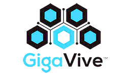 Gigavive Franchise Opportunity