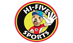 Hi-Five Sports Clubs Franchise Opportunity