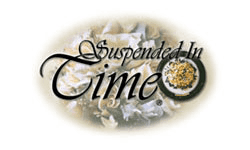 Suspended In Time Preservation Franchise Opportunity