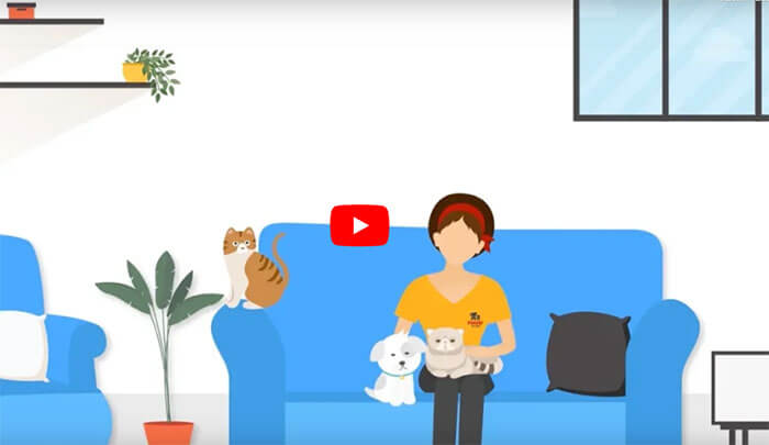 Fetch! Pet Care Video